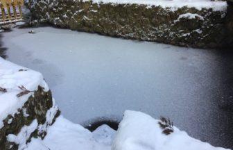奥の院 玉川が凍っています❄️