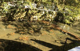 玉川に映る 水向地蔵