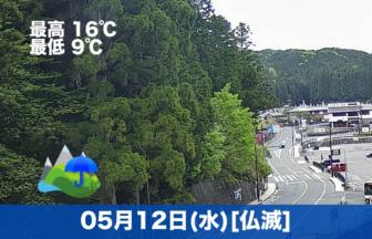 こんにちは☔本日の高野山は雨で、気温が少し下がりました。