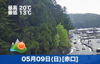 おはようございます☀今日も高野山は天気が良いです。お参りの方も昨日より増えました。