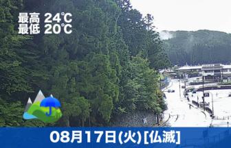 こんにちは😃今日は雨で静かな1日になりそうです☔