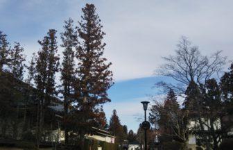 高野山は、穏やかな天気です😃