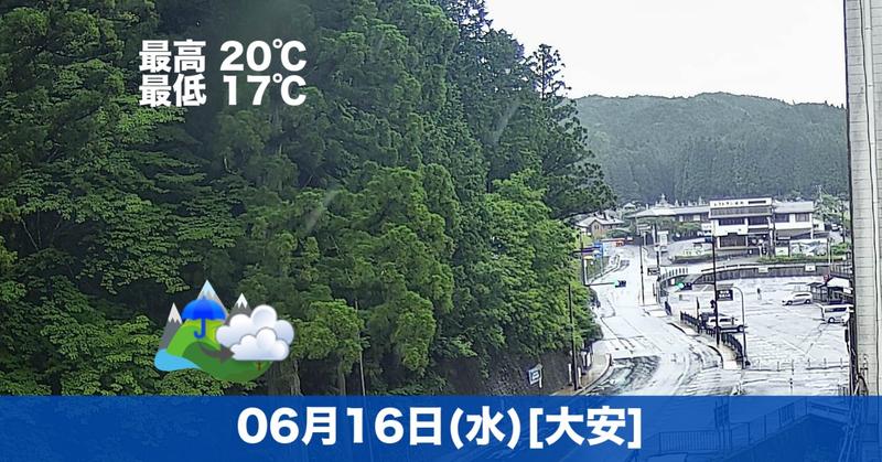 おはようございます☔本日の高野山は雨です。雨の音ってなんだか落ち着きますよね😊