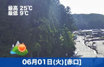 おはようございます☀今日の高野山は晴れの予報です。天気がいい日が続いています😊
