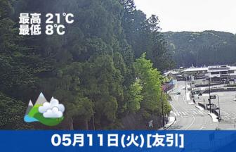遅くなりましたが、本日の高野山の様子です☁少し曇っていますが、温かいです😊