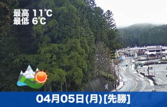 昨日の雨の影響か、少し気温がさがりました☔平日ですのでお参りの方は少なめです。午後から天気は回復する見込みです。