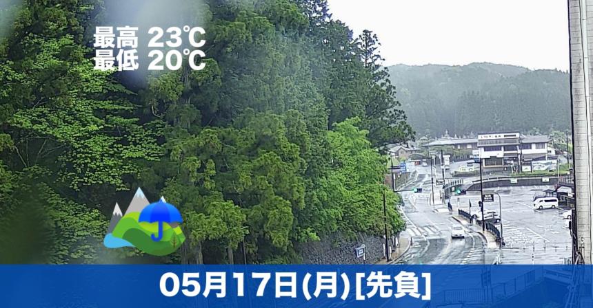 おはようございます☔気温は高めですが1日しっかり雨になる見込みです。