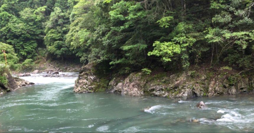 川の水も、落ち着いてきました🐲