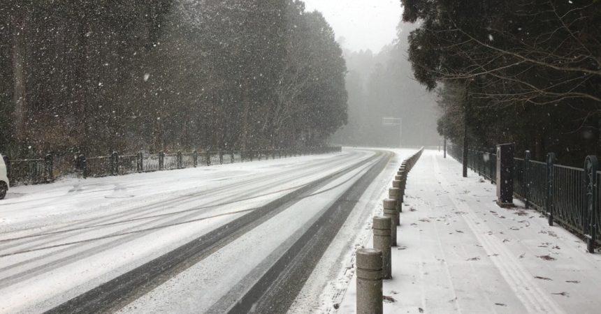 道にも雪が積もり始めました❄️