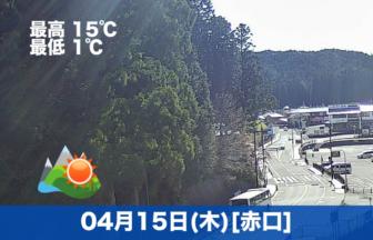 おはようございます☀本日の高野山は晴れ模様です。まだ少し肌寒いです。
