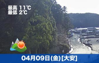 おはようございます☀天気は良いですが、肌寒いです。今日でnote連続投稿100日となりました😊