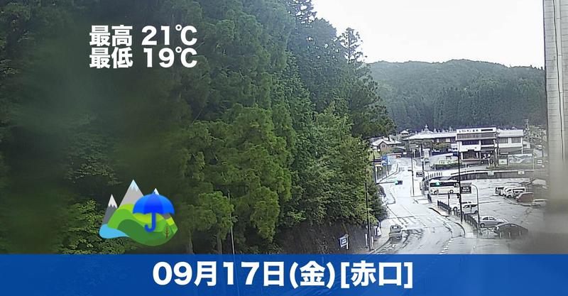 おはようございます☔本日の高野山は雨の予報です!