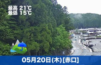 おはようございます☔今日の高野山は雨模様です。お参りの方も少なめです。