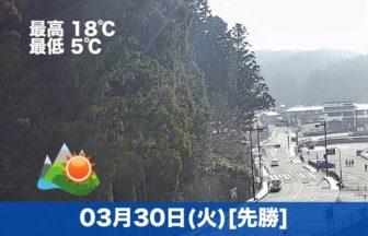 おはようございます☀高野山は今日も晴れです。天気がいい日が続いていて、お参り日和です😊