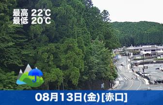 こんにちは😃今日は朝から曇り空☁涼しい1日になりそうです