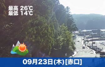 おはようございます☀本日の高野山は晴れの予報です。お参りの方の車が多く見えます👓