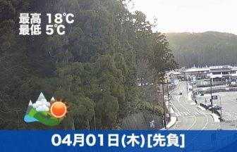おはようございます☀本日から4月ですね。高野山は天気が良い日が続いています。