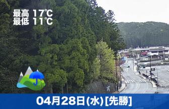 おはようございます☂今日の高野山は久しぶりの雨です。奥の院参道は雨の日に耳を澄ますと都会では聞こえない音がしておすすめです😊